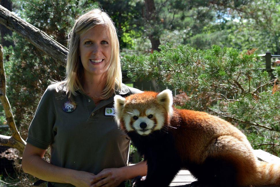 I Want Your Job: Vicki Hardstaff, Zookeeper