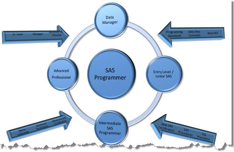 From Non-SAS Programmer to SAS Programmer | {EDC} Developer