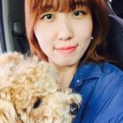 Bora Song Pinterest Account