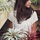 Monica // Sea & Asters Pinterest Account