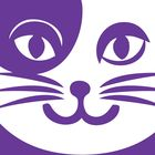 Grape Cat Vegan Clothing & Accessories Pinterest Account