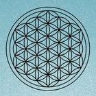 Milestone Vibrations Pinterest Account