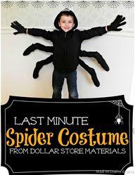 Last Minute Spider C