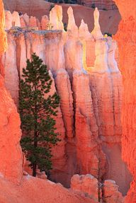 Bryce Canyon Nationa