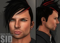 [NEW] Mens Hair Sid