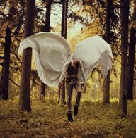 Fragile Wings by Kyl