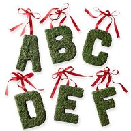 A-to-Z Hanging Moss