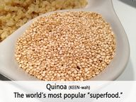 Quinoa is a grain th