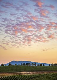 Harvest Sunset  – So