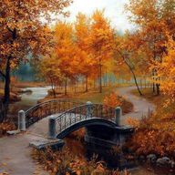 a beautiful autumn w