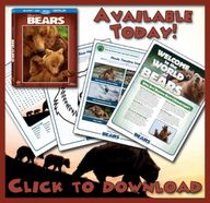 Free Printable Bears