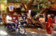 Chennai Street Scene