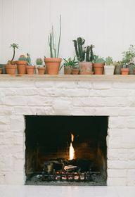 fireplace plus cacti...