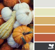 Autumn Gourds - Sept