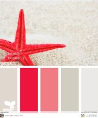 Color Palettes Color
