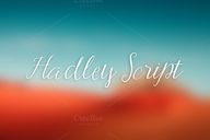 Check out Hadley Scr