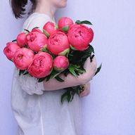 Hot pink peonies.