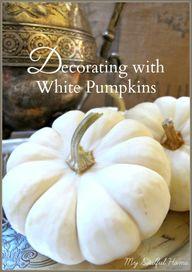 White Pumpkin Round