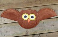 Paper Plate Owl Craf