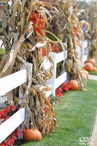 Outdoor Fall Decor I