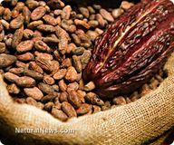 The power of cacao e