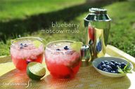 Blueberry moscow mul