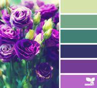Purple Flowers - Aug