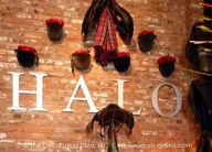 Halo Brick Wall | Th