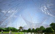 Giant bubbles could