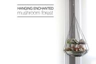 Hanging Enchanted Mu