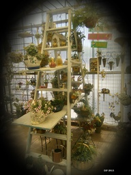 Ladder, Garden Inspi
