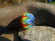 Rainbow Petals by cg