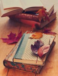 Autumnal bookish lov