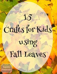 15 Crafts for Kids U