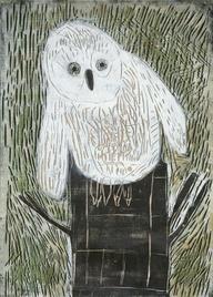 Pöllönpoikanen by Pa