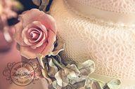Bryn Meadows Wedding