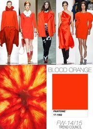 BLOOD-ORANGE fall wi
