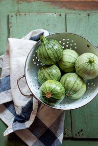 Zucchini by ashafsk