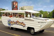 Ride The Ducks Brans