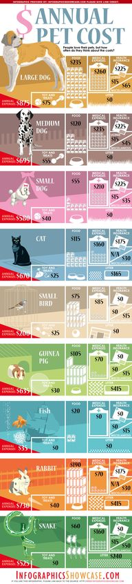 Annual pet costs