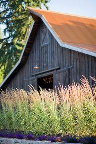Kelley Farm Bonney L
