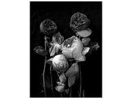 Roses Poster | DEBBI