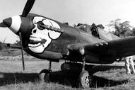 The P40 Warhawk of C