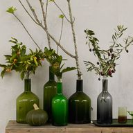 Glass Bottle Vases.