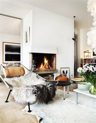 Interior Winter Insp