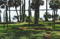 swings (1 of 1)