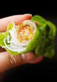 Vietnamese Fried Spr