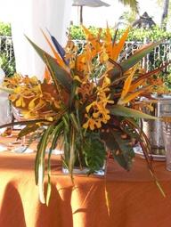 Tropical Floral Arra