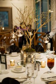 Rustic Tree Wedding