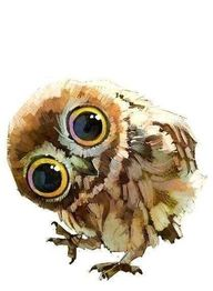 owl painting use acr